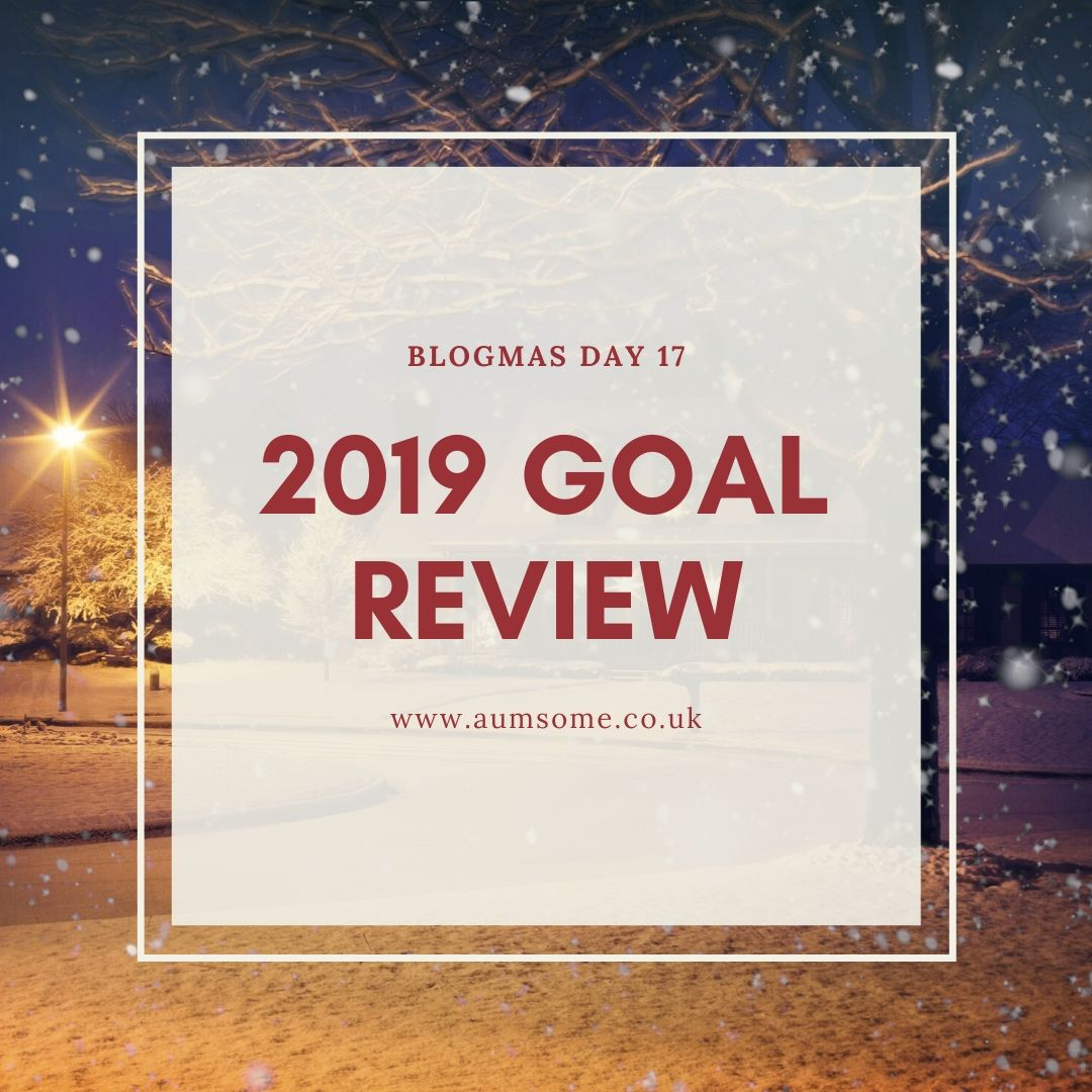 2019 Goal Review